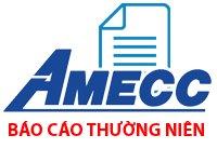 Báo cáo thường niên năm 2017 Công ty CP cơ khí xây dựng AMECC