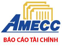 AMECC - Báo cáo tài chính hợp nhất quý IV.2017 Công ty CP CKXD AMECC