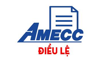 Điều lệ tổ chức và hoạt động Công ty năm 2008