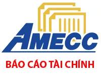 AMECC - Báo cáo Tài chính Hợp nhất Quý II 2017 - Công ty CP Cơ khí Xây dựng AMECC